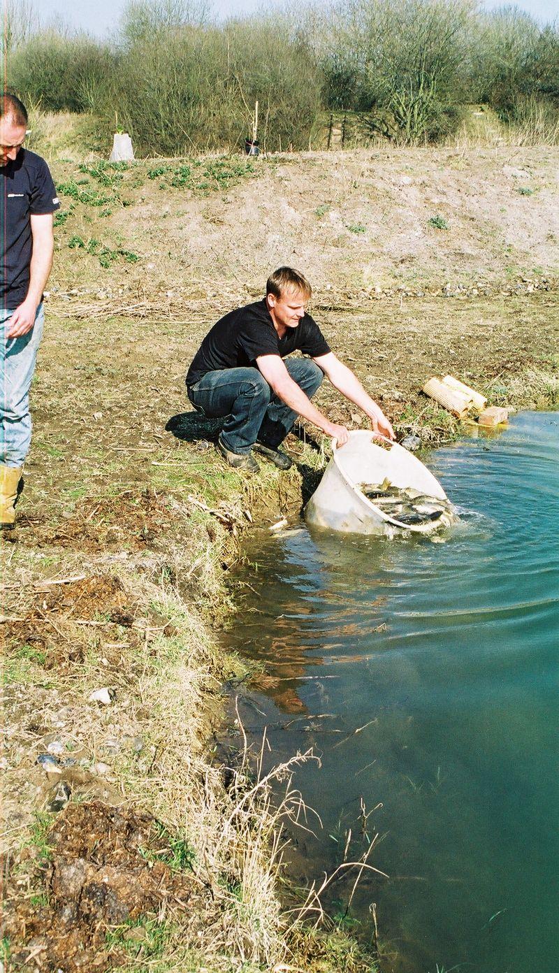 Stocking the match lake