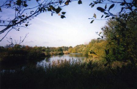 Aslacton lakes, norfolk